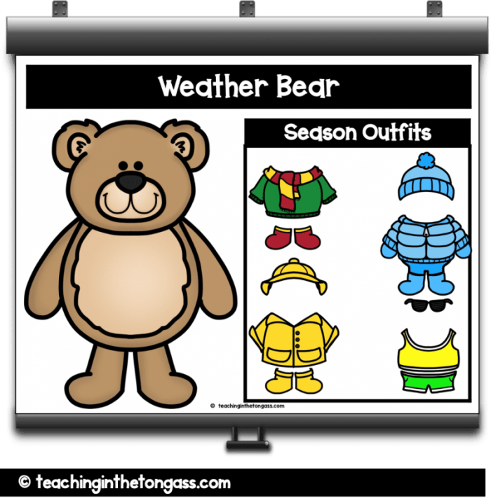 digital weather bear